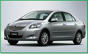 car fleet vios-300x185
